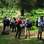 Lycian Way Group Hiking
