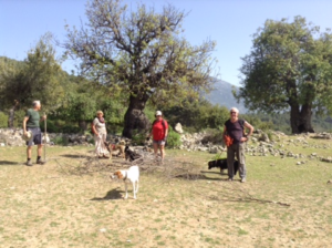 Lycian Way Hiking group